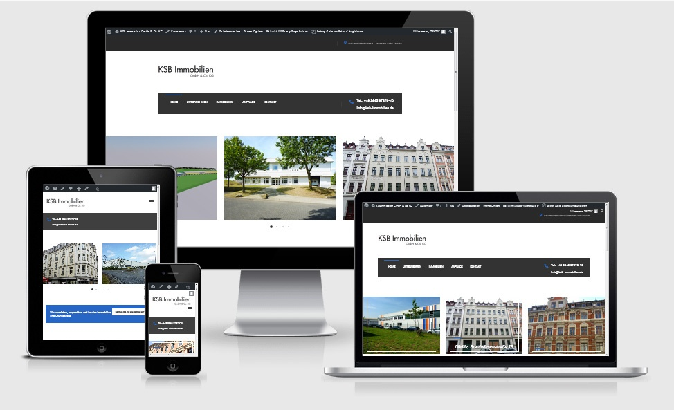 Webdesign Referenz- KSB-Immobilien-GmbH - Co KG