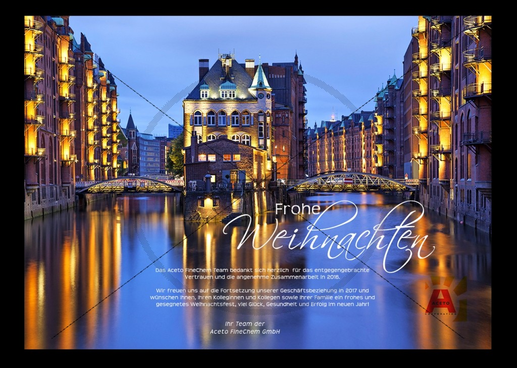 personalisierte Weichnachts-Ecard Aceto Pharma GmbH, Hamburg