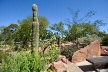 Ethel M Chocolates Factory and Cactus Garden - Henderson, Las Vegas, Nevada, USA