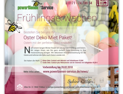 Grafik & Design Referenzen: Newsletter powerBienen-Service GmbH, Putbus