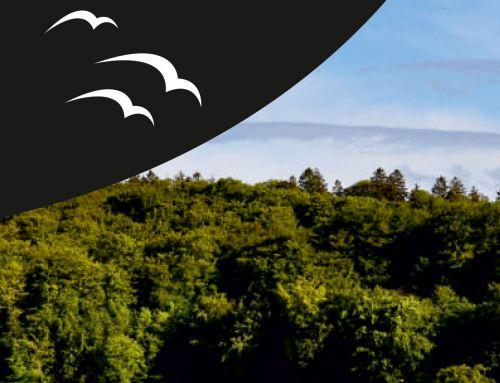 """Grafikdesign Referenzen: Flyer """"Villa Strandperle"""" Ferienservice Uhlendorf, Binz"""