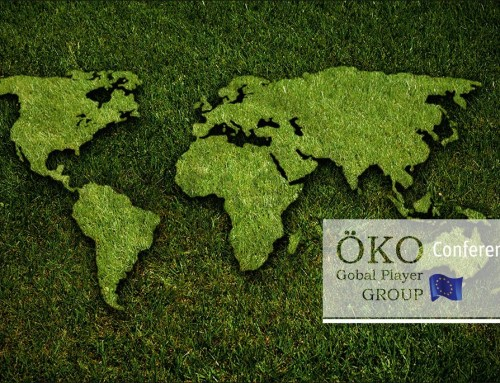"GRASKARTE ""ÖKO GLOBAL PLAYER"" Design Vorlage GK-2019-000140"