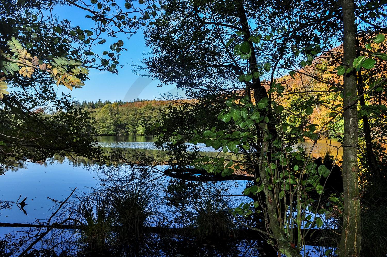 Landschaftsfotograf Naturfotograf